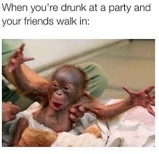 Drunk Friend Memes - telling your friends how much you love them especially when