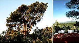 famous tree houses extremely cute luxury tree houses for sale amazing
