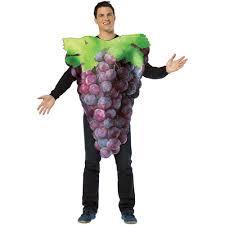 Halloween Costumes Bunch Purple Grapes Halloween Costume Size