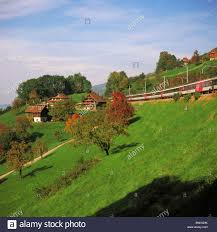 hill train railroad railway farmhouses hills fruit trees sbb stock