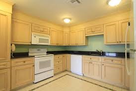 Light Wood Kitchens Light Grey Kitchen Cabinets With Black Countertops Home Design Ideas