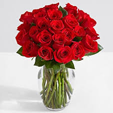 Red Flowers In A Vase Amazon Com Proflowers 24 Count Red Two Dozen Red Roses With