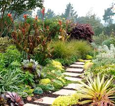 garden design front of house landscape with tropical plantings
