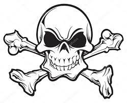 skull and crossbones stock vector slipfloat 21519431