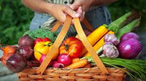 a plant based diet to ease psoriasis psoriasis center everyday