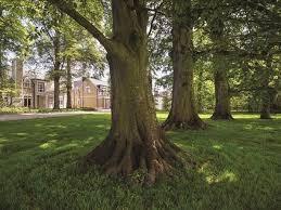 the walled garden houses mount juliet thomastown co kilkenny