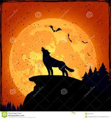 halloween background with wolf illustration 43579102 megapixl