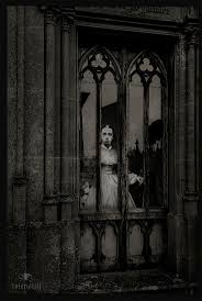 goth halloween background 2336 best the house that halloween built images on pinterest