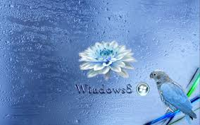 windows 8 wallpapers hd for desktop 64 wallpapers u2013 hd wallpapers
