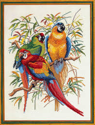 three parrots counted cross stitch kit