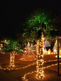 albuquerque ne heights home and lit up windmill palm trees light