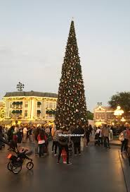 holiday tree lightings at disney california adventure and