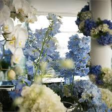 Blue Wedding Flowers 480 480 Thumb 1544667 Me London Ho 20160516045947648 Jpg