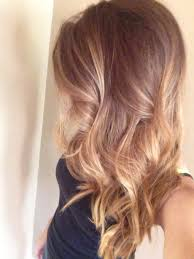 Caramel Hair Color With Honey Blonde Highlights Pin By Lauren Wise On Tame Your Mane Pinterest Bronde