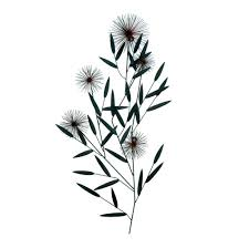 Wholesale Gifts And Home Decor Wholesale Artistic Wrought Iron Dandelion Wall Decor Dandelion