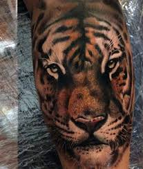 grey and white tiger on back leg