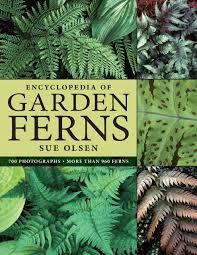 encyclopedia of garden ferns sue olsen 9780881928198 amazon com