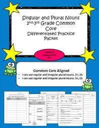 singular and plural nouns 2nd 3rd grade common core