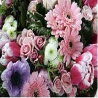 florists in nc florists nc guide to the best carolina florists