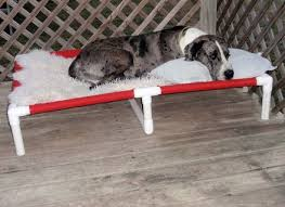 best 25 pvc dog bed ideas on pinterest cots diy projects