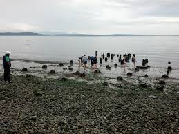 Me Kwa Mooks Park West Seattle by Low Tides Uncover Cool West Seattle History