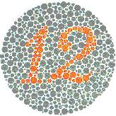 Color Blind Camouflage Color Blindness Tests And Facts