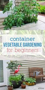 container vegetable gardening beginners gardening ideas