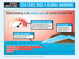 Florida Sea Level Rise Map by Sea Rise Science Sink Or Swim