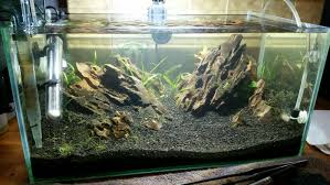 Fluval Edge Aquascape I Cut The Top Off My Fluval Edge To Make It Rimless Any Questions