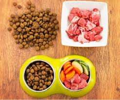 best dog food for small breeds american kennel club