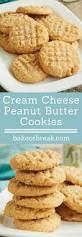 best 25 cheese cookies ideas on pinterest cheese cookies recipe