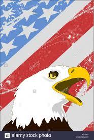 Bald Eagle On Flag Bald Eagle Stock Vector Images Alamy