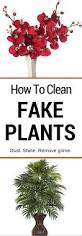 Fake Plants How To Clean Fake Plants Housewife How To U0027s