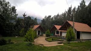 best homestays in chikmagalur for a hill vacation