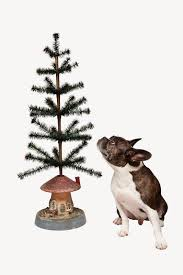 emily evans eerdmans harry heissmann on christmas tree stands
