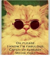 I Am Fabulous Meme - oh please l know i m fabulous catch up already meme on me me
