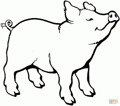 baby porky pig coloring pages coloring pages