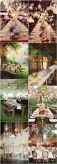 Backyard Wedding Lighting Ideas Phoenix Wedding From Some Like It Classic U2014 Wedding U0026 Event Design