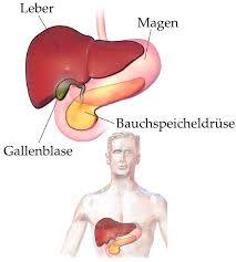bauchspeicheldrüsenschwäche symptome bauchspeicheldrüse