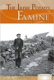 online resource for students to use to learn more about the irish