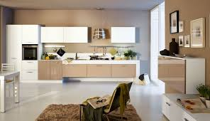 Refinish Kitchen Cabinets White Modern Kitchen Best Picture Of Painting Kitchen Cabinets White
