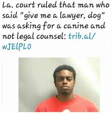 Dog Lawyer Meme - la court ruled that man who said give me a lawyer dog was asking for