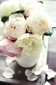 peonies flower delivery flowers that look like peonies peonies our wedding flowers