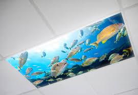 fluorescent light filters for classrooms decorative fluorescent light cover deboto home design decorative