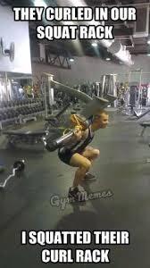 Squat Meme - curling more than you squat bodybuilding com forums