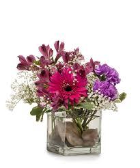 florist knoxville tn purple rocks knoxville tn florist flower delivery crouch florist