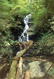 table rock hiking trail mill creek falls near pickens sc
