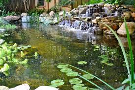 Backyard Fish Pond Kits Backyard Koi Ponds U0026 Water Garden Installation In Westfield Nj