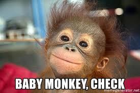 Baby Monkey Meme - baby monkey check baby monkey cutie meme generator