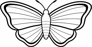 butterfly pics to color u2013 my free printable coloring pages